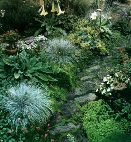 raleigh garden path_full