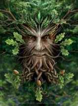 oakking