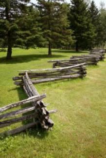 comparison-types-woods-fences-gates-1-1.1-800X800